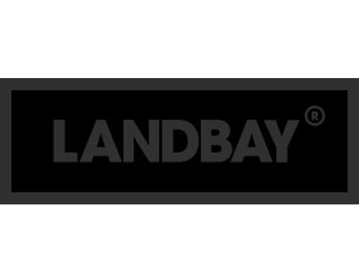 Landbay exceeds 5,500% growth in revenue